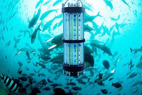 pl16812279-waterproof_underwater_dock_fishing_lights_green_submersible_fishing_lights.jpg